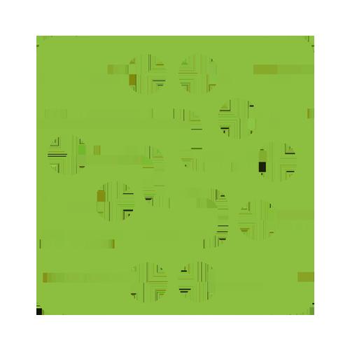 نانو الکترونیک